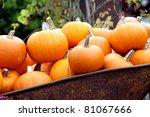 Halloween Pumpkin In A Pile...