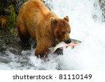 Alaska Brown Bear Is Catching ...