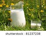 Stock Photo: Jug of milk on the meadow - stock photo