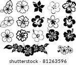 hibiscuses   Shutterstock .eps vector #81263596