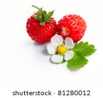 Wild Ripe Strawberry Isolated...