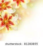 lily flowers border design... | Shutterstock . vector #81283855