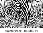 zebra texture fabric style. | Shutterstock . vector #81338044