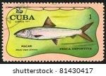 Small photo of CUBA - CIRCA 1971: stamp printed by Cuba, shows fish, Albula vulpes, circa 1971