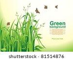 spring background. green grass. ... | Shutterstock .eps vector #81514876