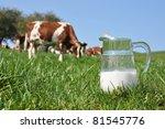 Jug of milk against herd of cows. Emmental region, Switzerland - stock photo