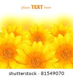abstract yellow flowers border... | Shutterstock . vector #81549070