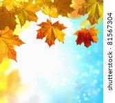 red and yellow leaves against a ... | Shutterstock . vector #81567304