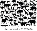 illustration with animals... | Shutterstock . vector #81575626