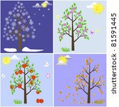 trees in four seasons spring ... | Shutterstock . vector #81591445