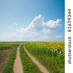 road in field under clouds - stock photo