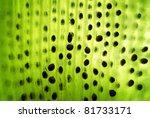 Macro Of Green Kiwi With Seeds...