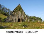 Ferment barn at a tobacco plantation at Cuba - stock photo
