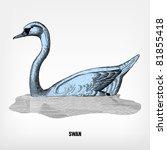 Engraving Vintage Swan From ...