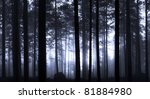 Blue haze in forest in early morning - stock photo