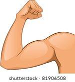 man's arm muscles. vector... | Shutterstock .eps vector #81906508