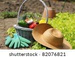 Basket Of Vegetables Freshly...