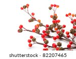 Christmas Branch Of Red Berrie...