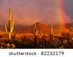 Rainbow Sunset At The Saguaro...