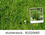 Green Forest Background And...