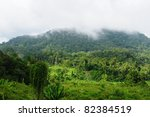 scenic view of wild tropical... | Shutterstock . vector #82384519