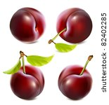 vector plums with leaves | Shutterstock .eps vector #82402285