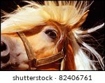 Detail Of A Horse Head With...