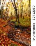 Autumn  Leafs In Autumn Forest  ...