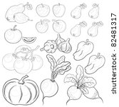 vector  set  various vegetables ... | Shutterstock .eps vector #82481317