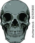 vector skull illustration | Shutterstock .eps vector #82505800