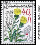 "Small photo of CZECHOSLOVAKIA - CIRCA 1979: A Stamp printed in CZECHOSLOVAKIA shows image of a Alpine Hawkweed, from the series ""Mountain Flowers"", circa 1979"