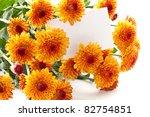 beautiful bouquet of orange on a white background Chrysanthemum - stock photo