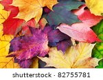 Leaves Of Fall  Decorative And...