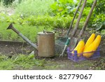 retro design watering can on a... | Shutterstock . vector #82779067