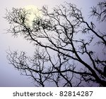 the moon behind tree branches | Shutterstock .eps vector #82814287