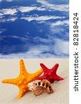 Starfish on the beach on blue sky background - stock photo