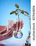 Ecologic source of energy - stock photo
