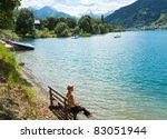 beautiful summer alpine  lake... | Shutterstock . vector #83051944