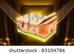 digital illustration of skin in ... | Shutterstock . vector #83104786