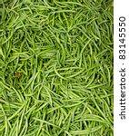 Freshly Harvested Green Or...