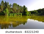 lake of the umbra forest in... | Shutterstock . vector #83221240