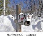 Cow Mailbox Aspen