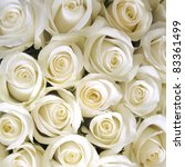 Stock photo white roses background 83361499