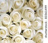 Stock photo white roses background 83361499