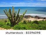Beach In Jericoacoara On The...