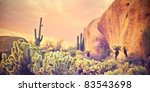 Beautiful Desert Landscape Wit...