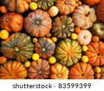 Autumnal Pumpkins  Harvest