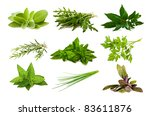 mix aromatic herbs isolated on... | Shutterstock . vector #83611876