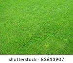Beautiful Green Lawns Perfectl...