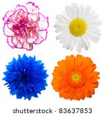 Stock photo set of colorful flowers isolated on a white background 83637853